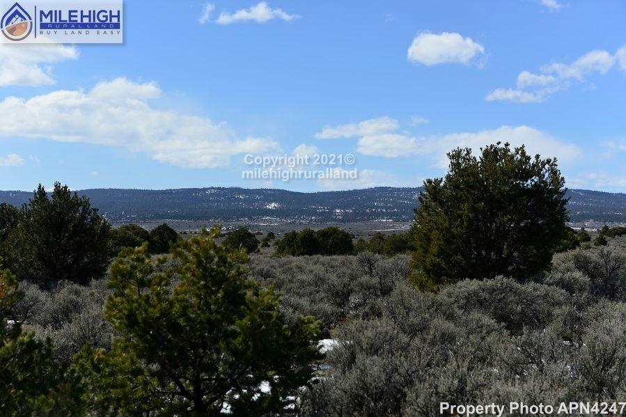 Property Photo_APN 4247